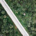 Siargao Highlights: Willkommen auf der Palmeninsel!
