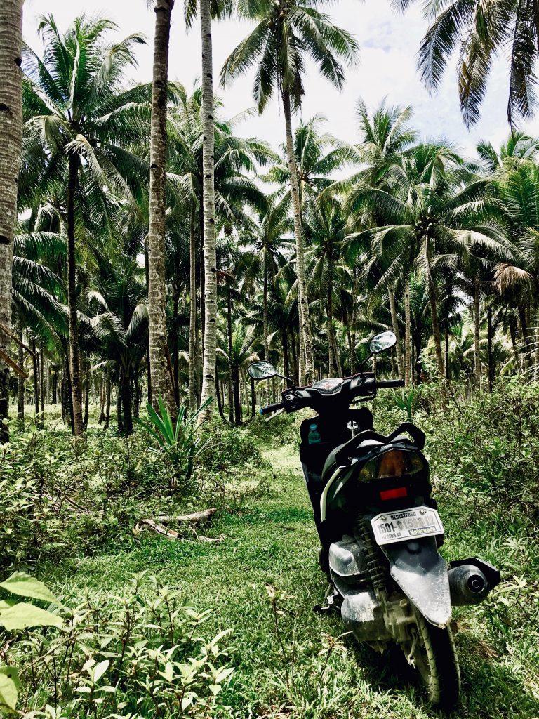Philippinen Route Siargao