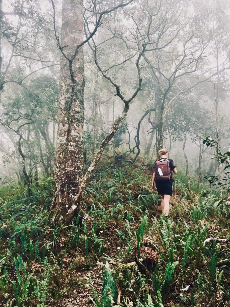 Mount Rinjani Trekking