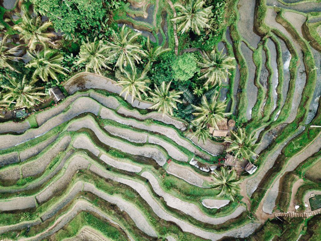 Route durch Indonesien Bali
